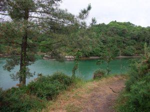 rivière sentier
